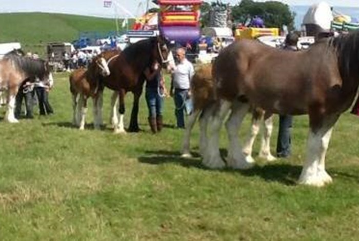 Kintyre Agricultural Show 2017