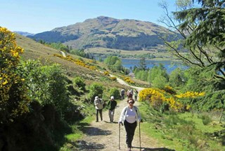 Cowal-way-walking.jpg