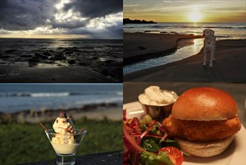 Beach, dog, ice creamm and burger images